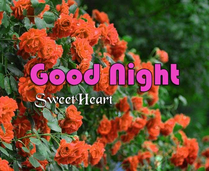 Nice Good Night Pics