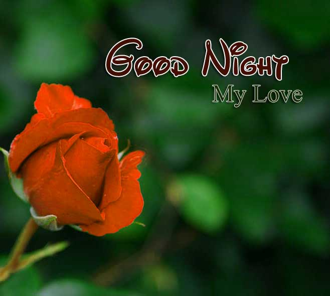 Nice Good Night Pictures Photo