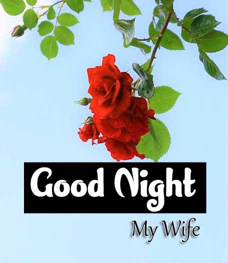 Nice Good Night Wallpaper Free
