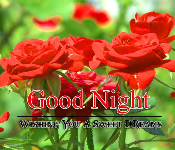 Nice Good Night wallpaper Images