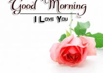 Top Good Morning Images Pictures