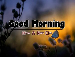 Top Good Morning Photo Free 1
