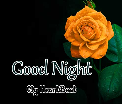 Top Good Night Download Hd Free