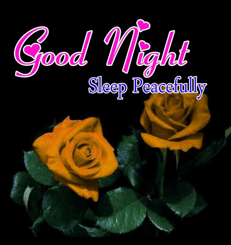 Top Good Night PIcs Free
