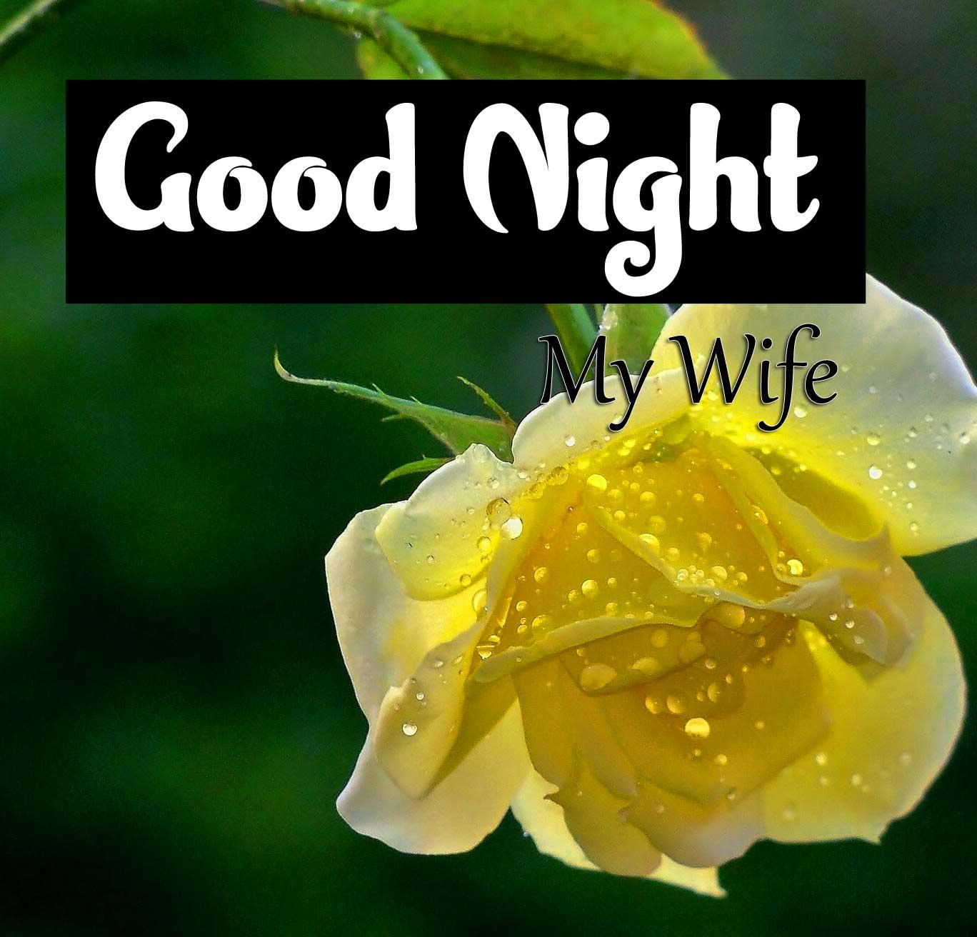 Top Good Night Pics Downloda