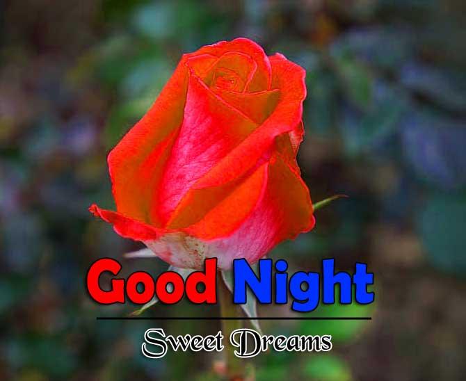 Top Good Night Pics Wallp0aper