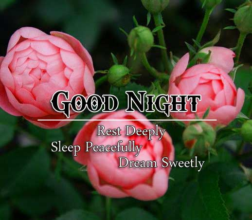 Top Good Night Pictures Free