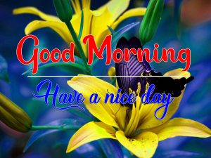 All Good Morning Images for Facebook