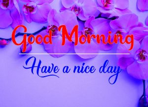 All Good Morning Images new Download