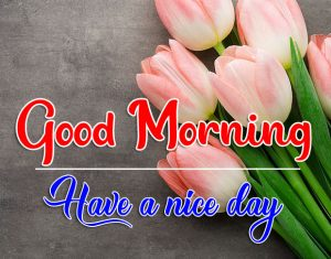 All Good Morning Photo Download