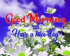 All Good Morning Photo Free 3