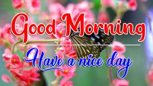 All Good Morning Photo for Facebook