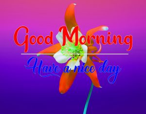 All Good Morning Pics New Download