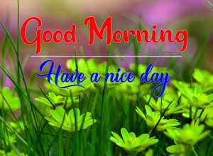 All Good Morning Pics Pictures