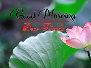 All Good Morning Wallpaper for Facebook whatsapp