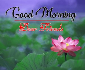 All Good Morning images Pics Pictures