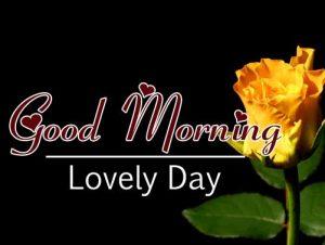 Beautiful Good Morning Download HD Free
