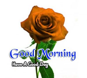 Beautiful Good Morning Download hd