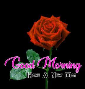 Beautiful Good Morning Free Photo
