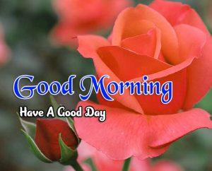 Beautiful Good Morning Hd Download