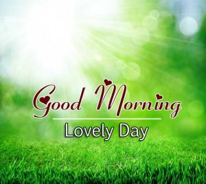 Beautiful Good Morning Hd Free Download