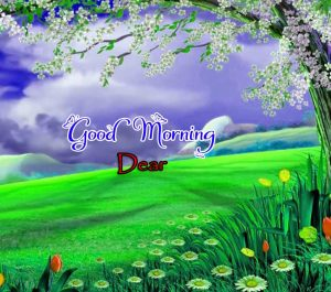 Beautiful Good Morning Hd Free Images