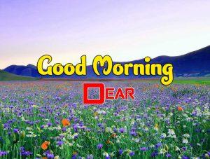 Beautiful Good Morning Hd Photo