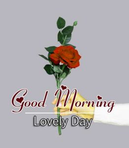 Beautiful Good Morning Hd Photo Free