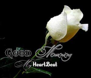Beautiful Good Morning Photo Hd