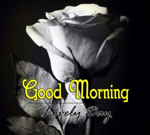 Beautiful Good Morning Photo Images 1