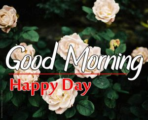 Beautiful Good Morning Pictures 1