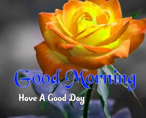 Beautiful Good Morning Pictures