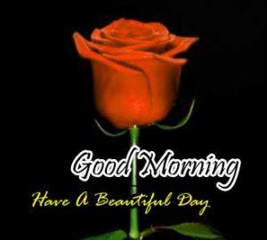 Beautiful Good Morning Wallapper