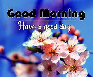 Best Flower Good Morning Wallpaper 2