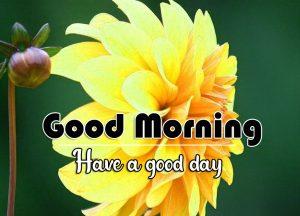 Best Free Flower Good Morning Wallpaper