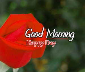 Best Good Morning Download Hd Free 2