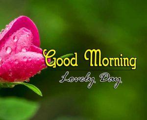 Best Good Morning Download Images 5