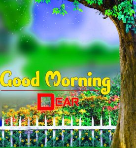 Best Good Morning Free Download 2