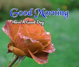 Best Good Morning Free Hd Pics