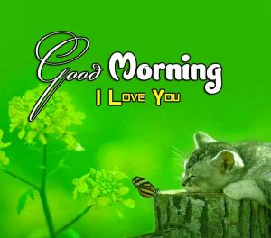 Best Good Morning Free Pics Images