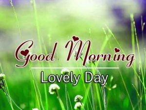 Best Good Morning Images Hd 3