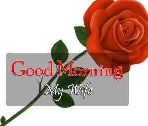 Best Good Morning Images Pics 4