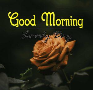 Best Good Morning Photo 2