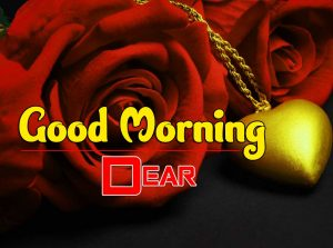 Best Good Morning Photo Free