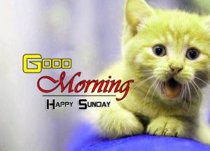 Best Good Morning Photo Images 3