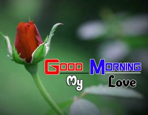 Best Good Morning Pictures 3