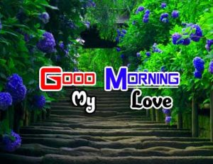 Best Good Morning Pictures 4