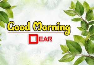 Best Good Morning Pictures Images 3