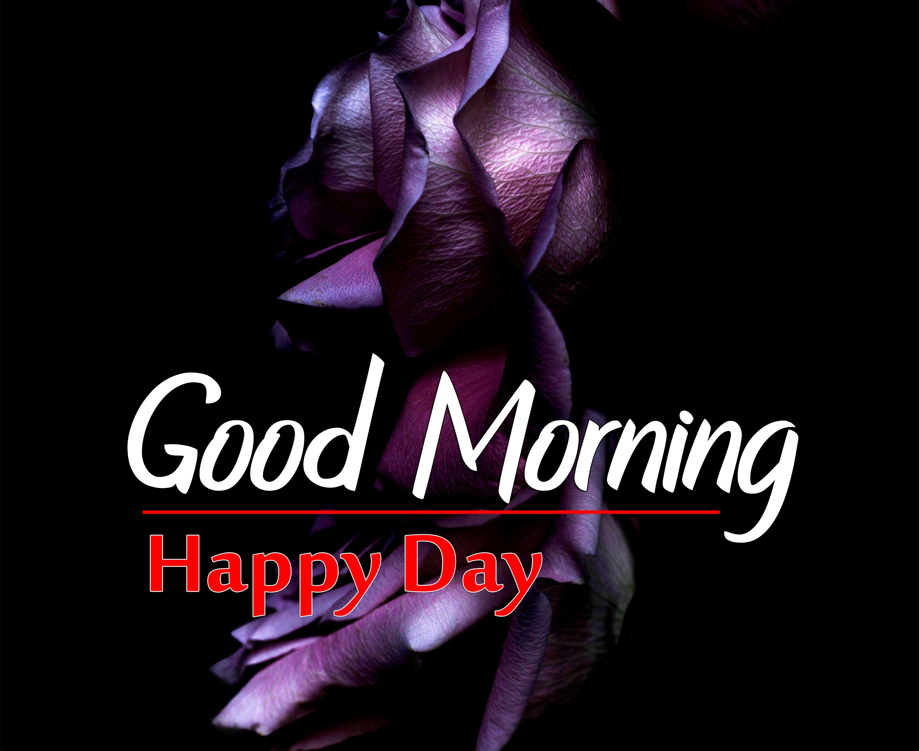 98+ Best Good Morning Images Wallpaper Pictures list Here 2021 Download