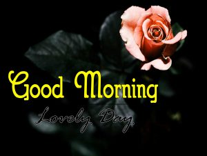 Best Good Morning Wallpaper hd Free 1